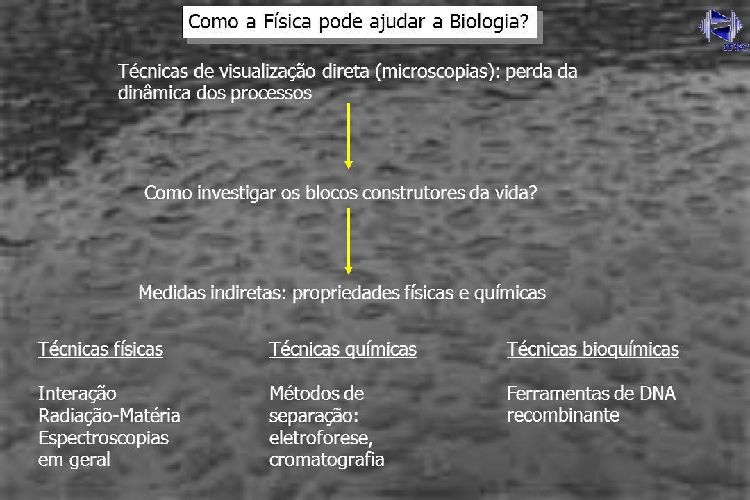 Como a Física pode ajudar a Biologia
