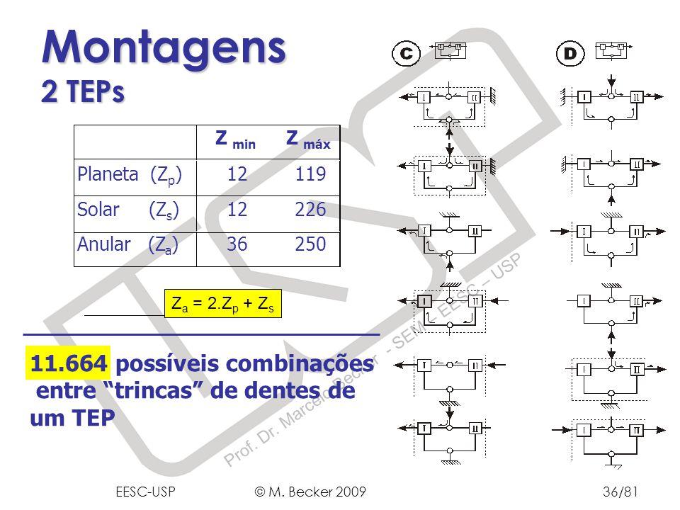 Montagens 2 TEPs 11.664 possíveis combinações