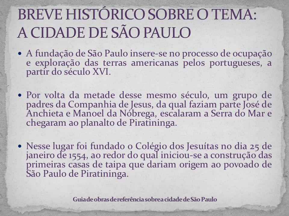BREVE HISTÓRICO SOBRE O TEMA: A CIDADE DE SÃO PAULO