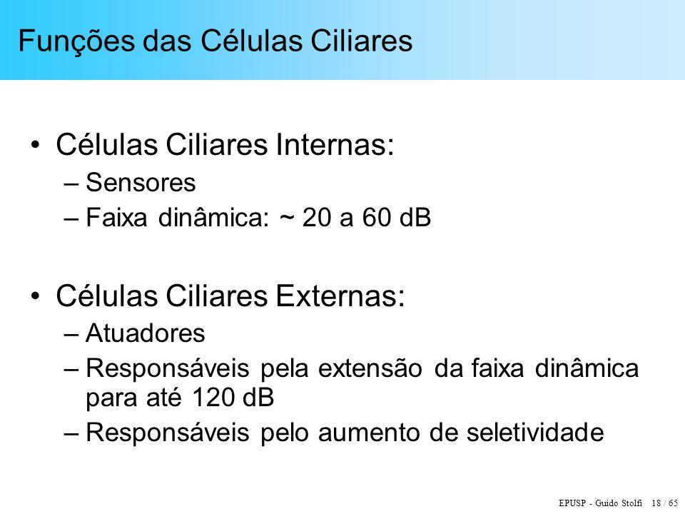 Funções das Células Ciliares