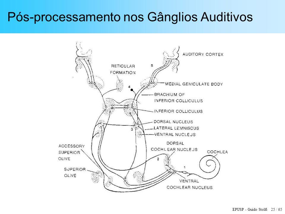 Pós-processamento nos Gânglios Auditivos