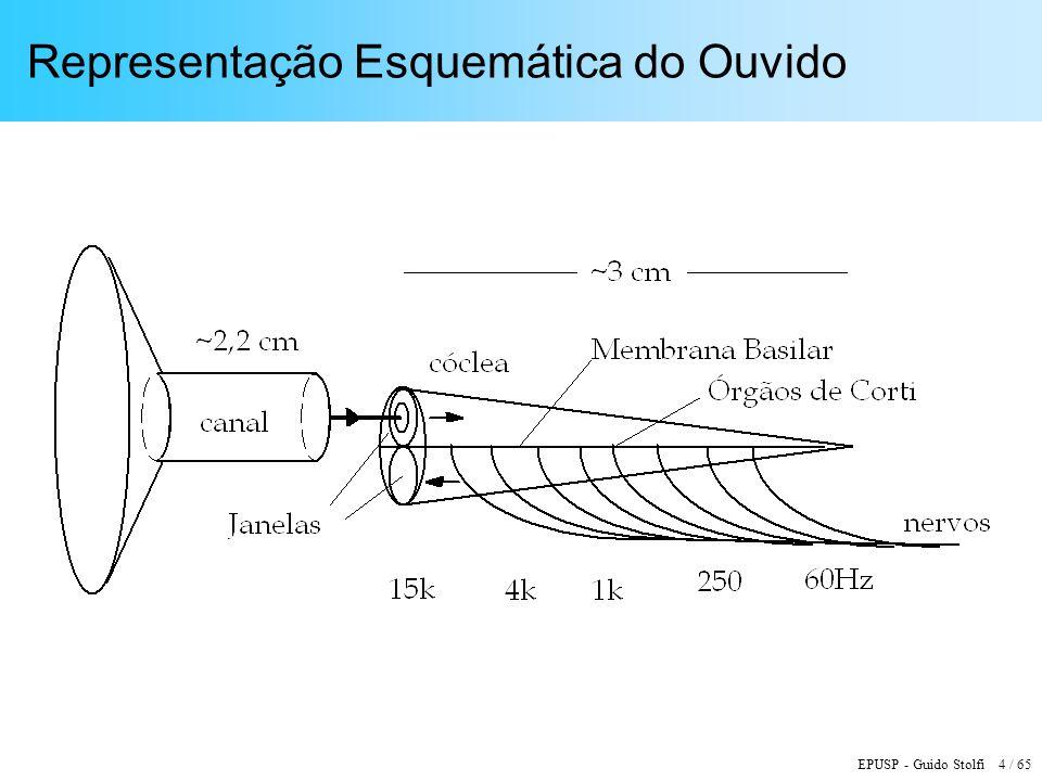 Representação Esquemática do Ouvido