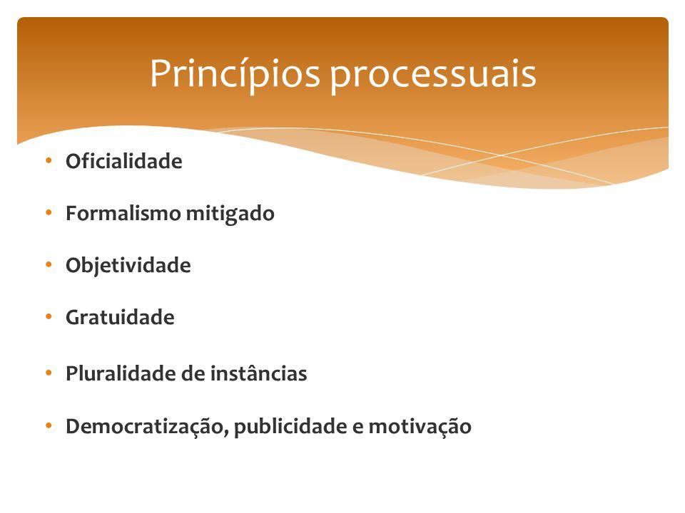 Princípios processuais