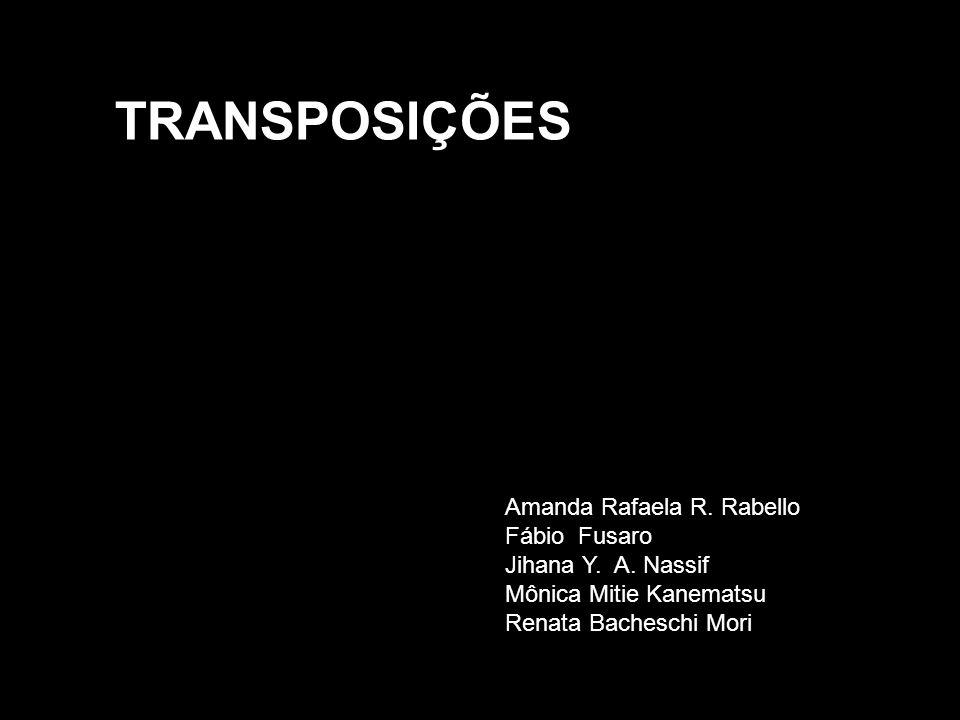 TRANSPOSIÇÕES Amanda Rafaela R. Rabello Fábio Fusaro