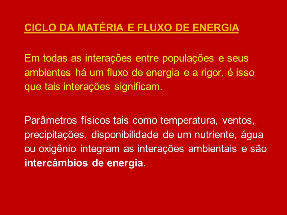 CICLO DA MATÉRIA E FLUXO DE ENERGIA