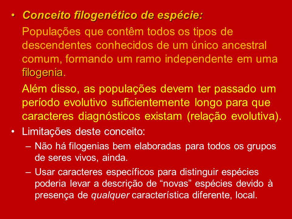 Conceito filogenético de espécie: