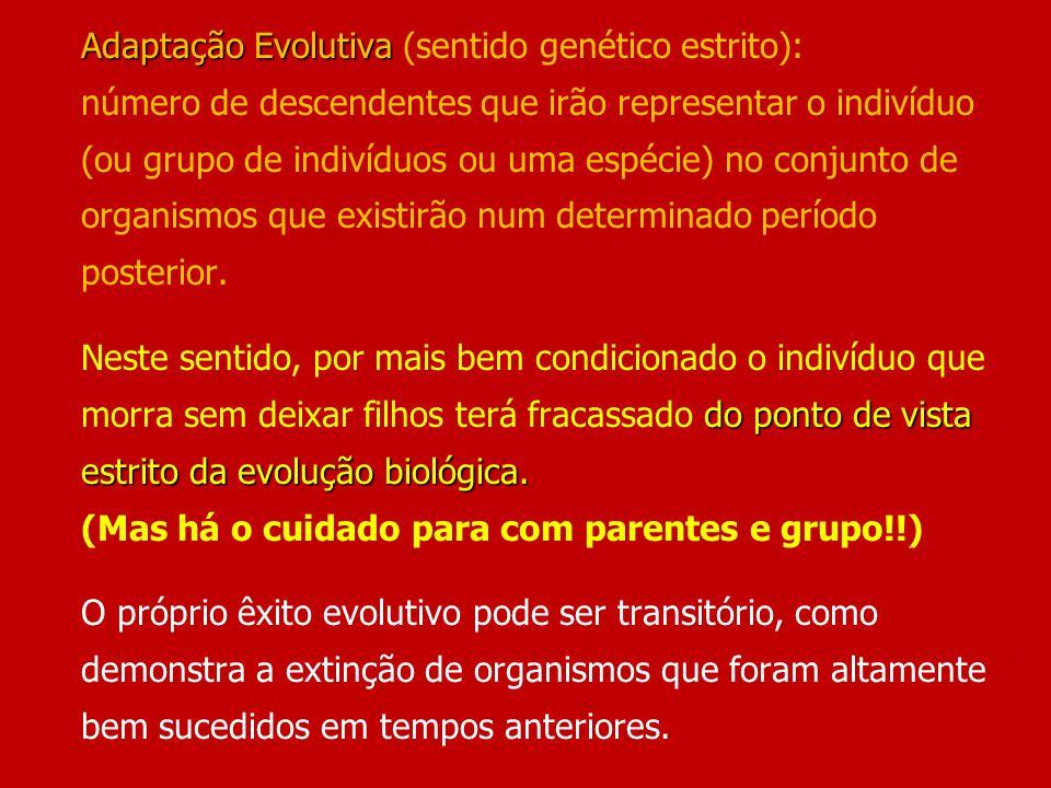Adaptação Evolutiva (sentido genético estrito): número de descendentes que irão representar o indivíduo (ou grupo de indivíduos ou uma espécie) no conjunto de organismos que existirão num determinado período posterior.