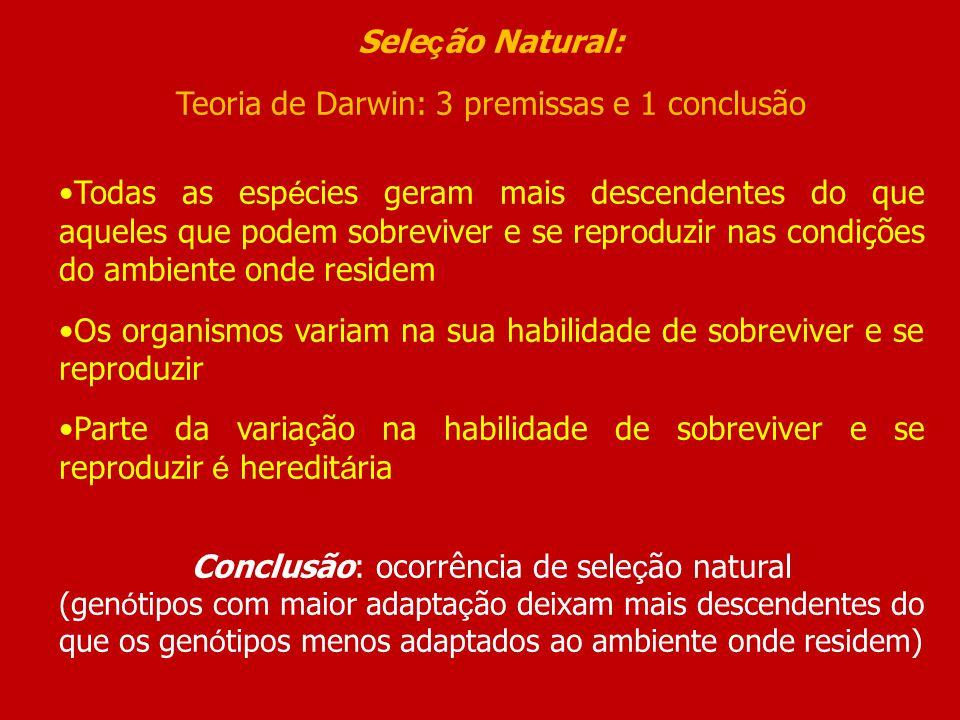 Teoria de Darwin: 3 premissas e 1 conclusão
