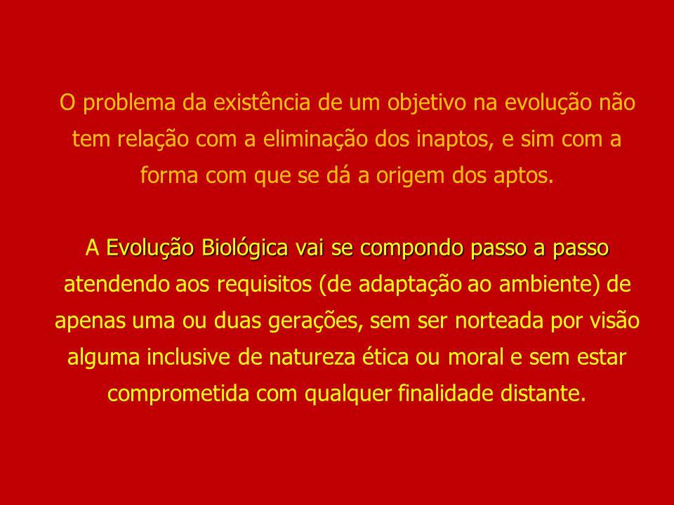 O problema da existência de um objetivo na evolução não tem relação com a eliminação dos inaptos, e sim com a forma com que se dá a origem dos aptos.