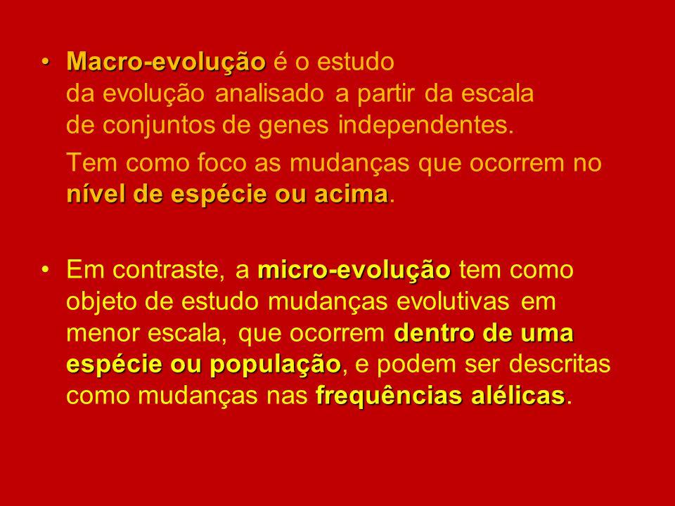 Macro-evolução é o estudo da evolução analisado a partir da escala de conjuntos de genes independentes.