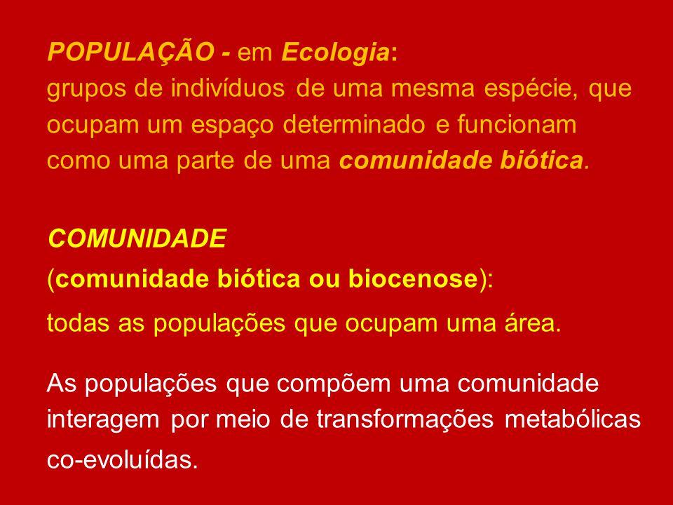 POPULAÇÃO - em Ecologia: