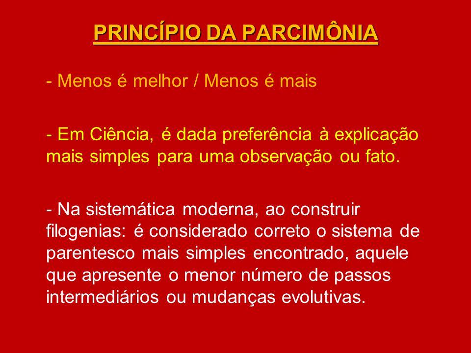 PRINCÍPIO DA PARCIMÔNIA