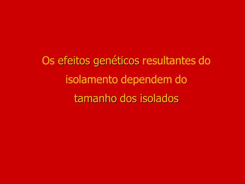 Os efeitos genéticos resultantes do isolamento dependem do tamanho dos isolados