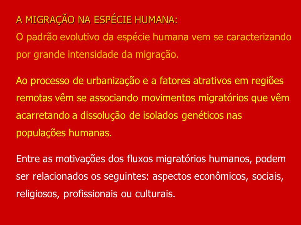 A MIGRAÇÃO NA ESPÉCIE HUMANA: O padrão evolutivo da espécie humana vem se caracterizando por grande intensidade da migração.