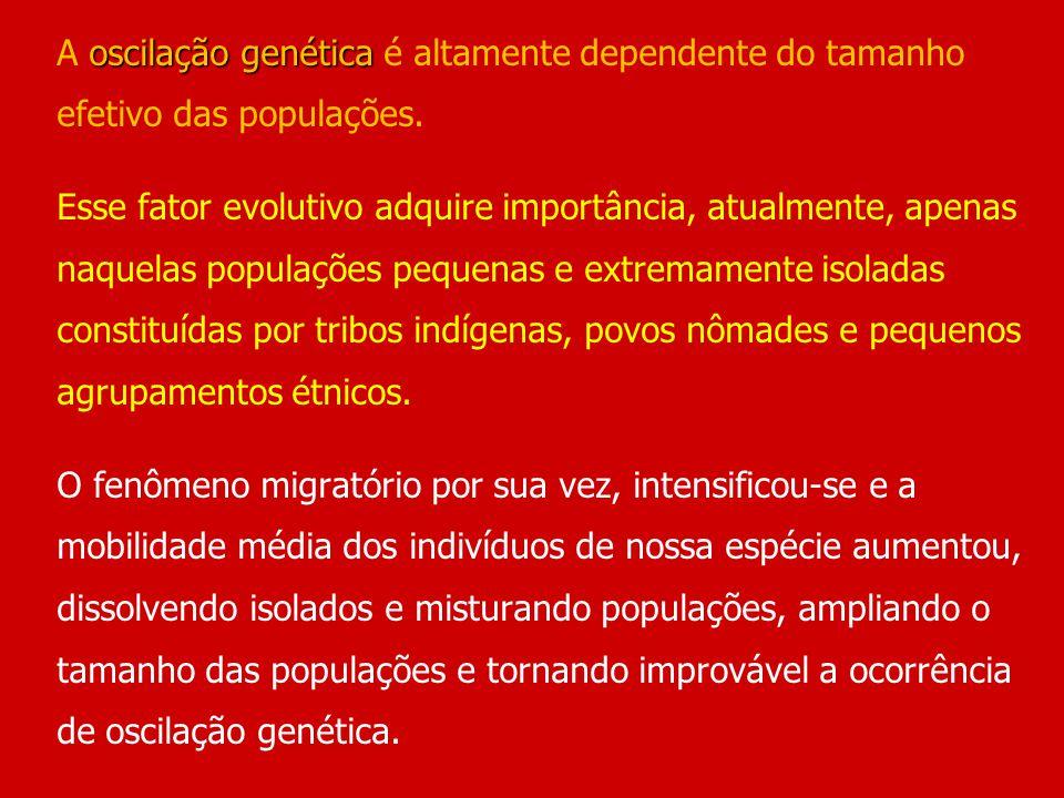 A oscilação genética é altamente dependente do tamanho efetivo das populações.