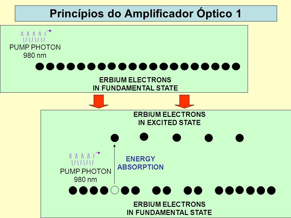 Princípios do Amplificador Óptico 1
