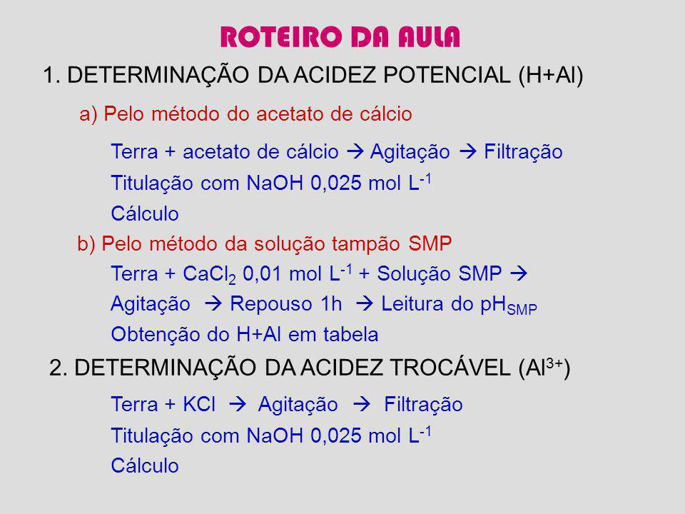 ROTEIRO DA AULA a) Pelo método do acetato de cálcio