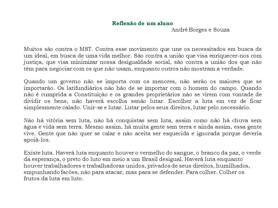 Reflexão de um aluno André Borges e Souza.