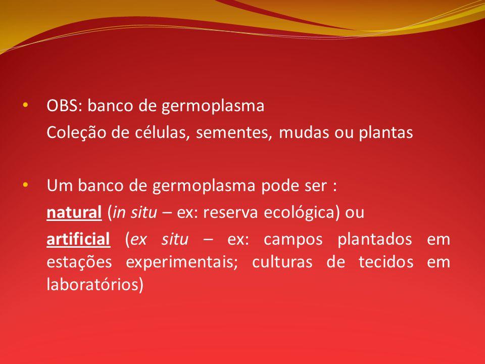 OBS: banco de germoplasma