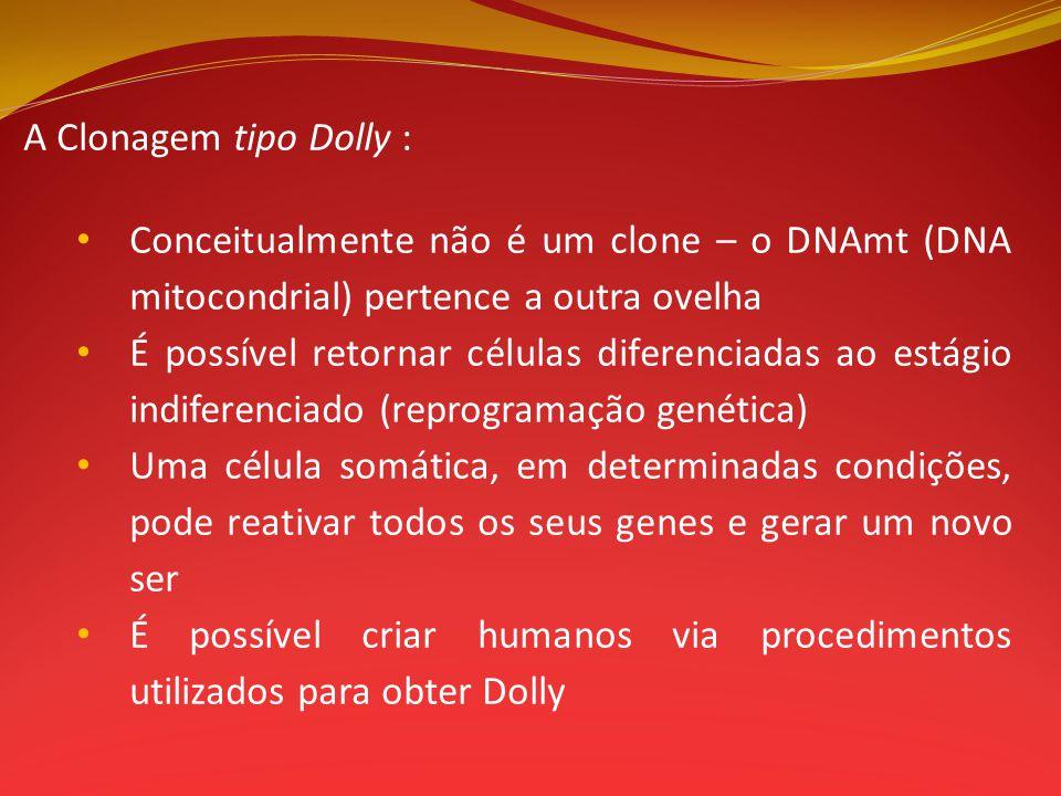 A Clonagem tipo Dolly : Conceitualmente não é um clone – o DNAmt (DNA mitocondrial) pertence a outra ovelha.
