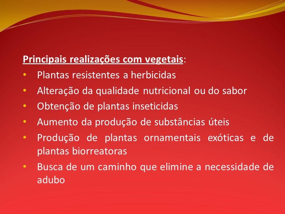 Principais realizações com vegetais: