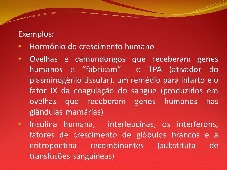 Exemplos: Hormônio do crescimento humano.
