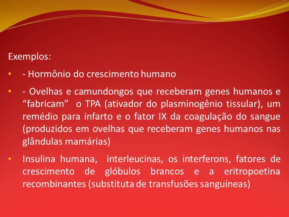 Exemplos: - Hormônio do crescimento humano.