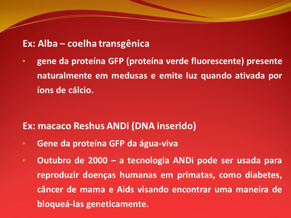 Ex: Alba – coelha transgênica