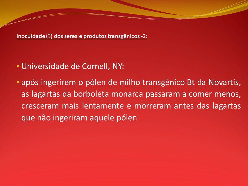Universidade de Cornell, NY: