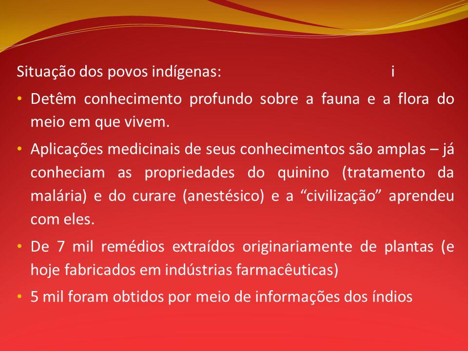 Situação dos povos indígenas: i