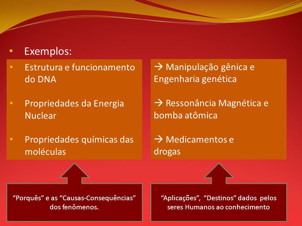 Exemplos: Estrutura e funcionamento do DNA  Manipulação gênica e