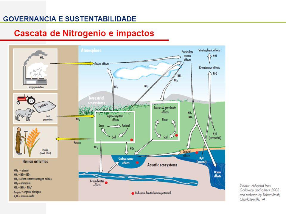 Cascata de Nitrogenio e impactos
