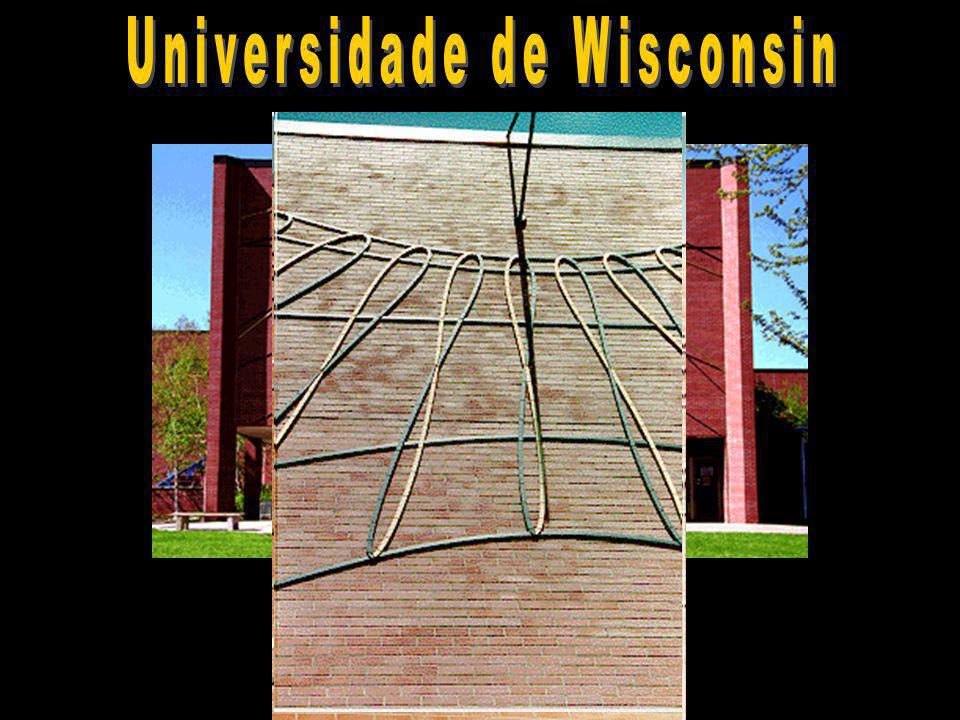 Universidade de Wisconsin
