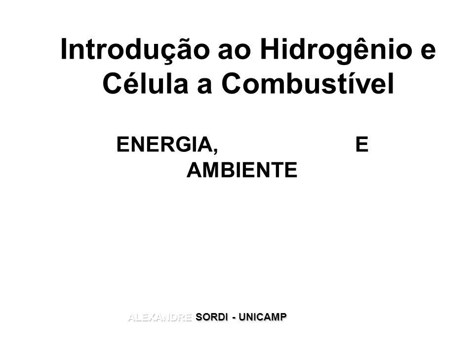 Introdução ao Hidrogênio e Célula a Combustível