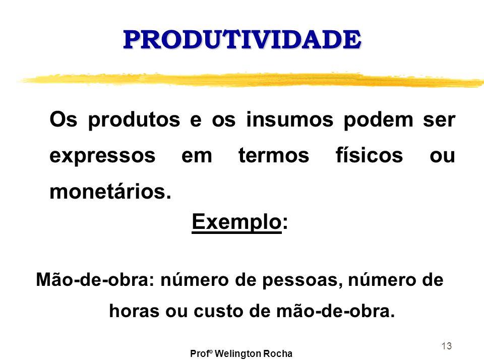 PRODUTIVIDADE Os produtos e os insumos podem ser expressos em termos físicos ou monetários. Exemplo: