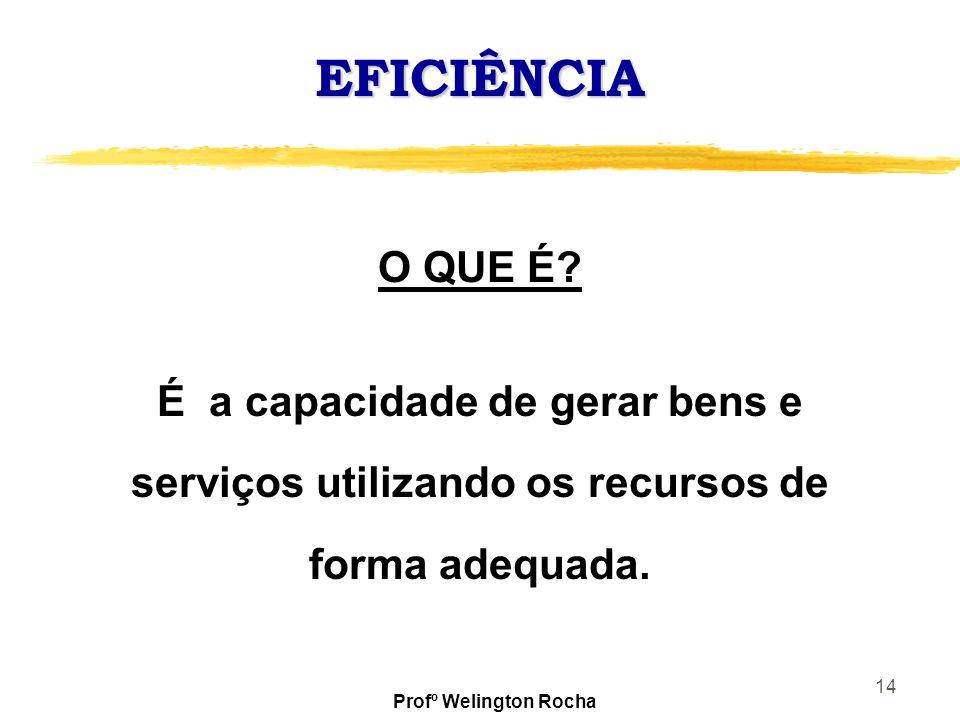 EFICIÊNCIA O QUE É É a capacidade de gerar bens e serviços utilizando os recursos de forma adequada.