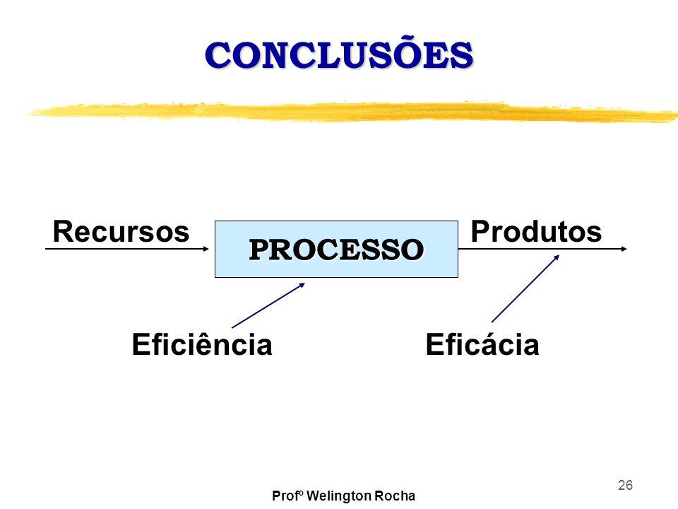 CONCLUSÕES Recursos Produtos PROCESSO Eficiência Eficácia