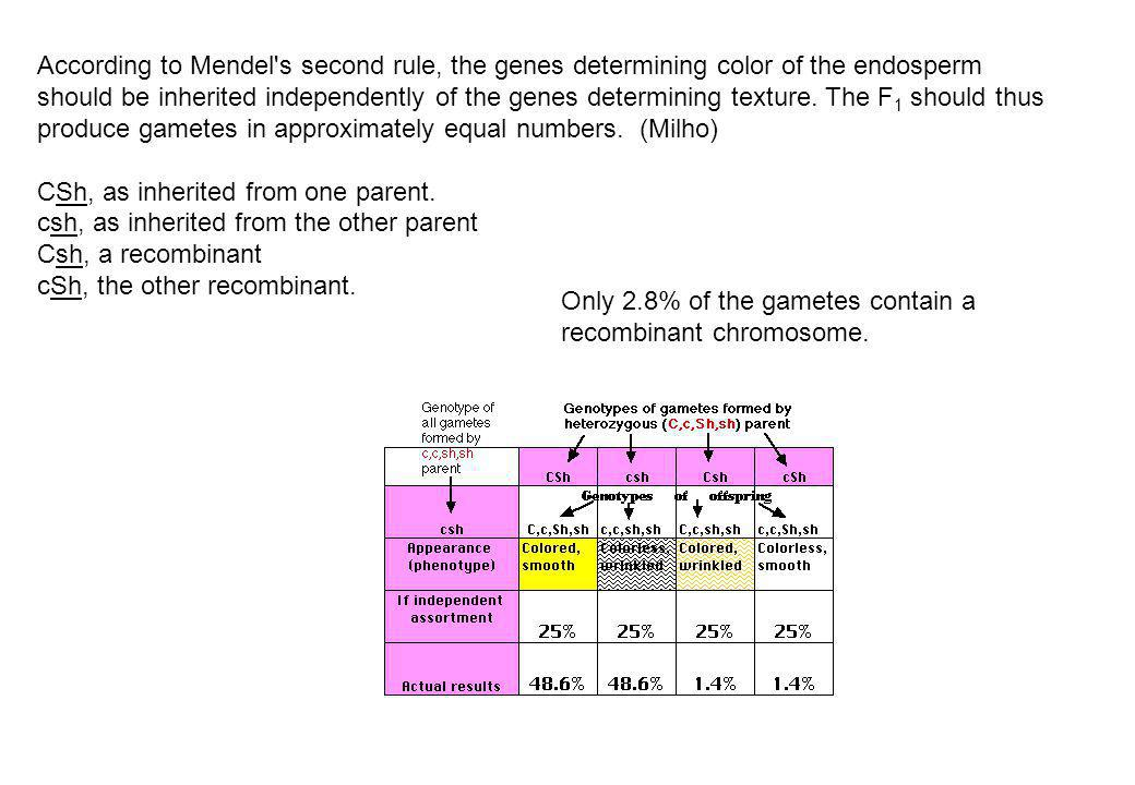 According to Mendel s second rule, the genes determining color of the endosperm should be inherited independently of the genes determining texture. The F1 should thus produce gametes in approximately equal numbers. (Milho)