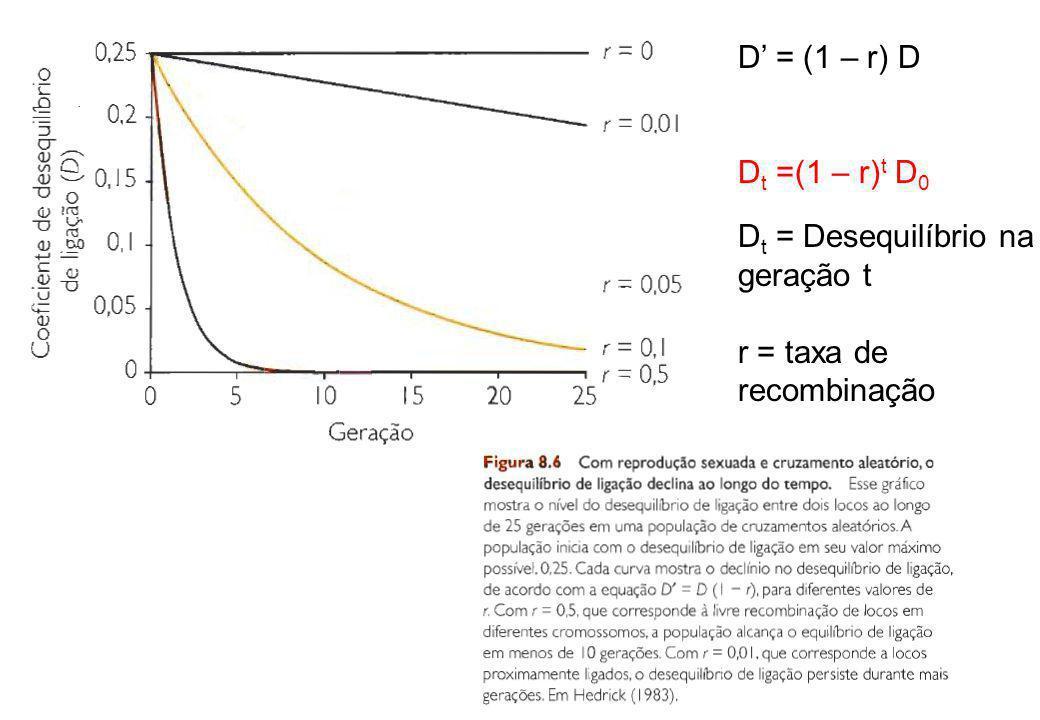 D' = (1 – r) D Dt =(1 – r)t D0 Dt = Desequilíbrio na geração t r = taxa de recombinação