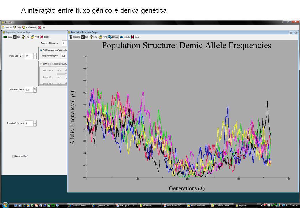 A interação entre fluxo gênico e deriva genética