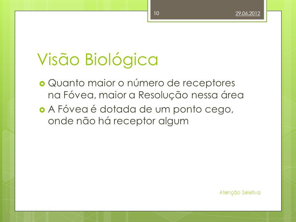 29.06.2012 Visão Biológica. Quanto maior o número de receptores na Fóvea, maior a Resolução nessa área.