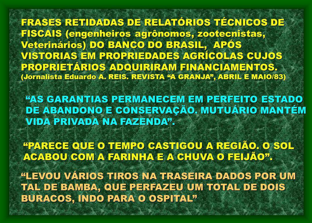 FRASES RETIDADAS DE RELATÓRIOS TÉCNICOS DE