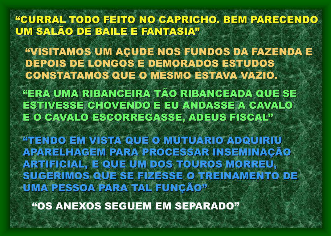 CURRAL TODO FEITO NO CAPRICHO. BEM PARECENDO