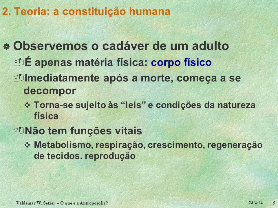 2. Teoria: a constituição humana