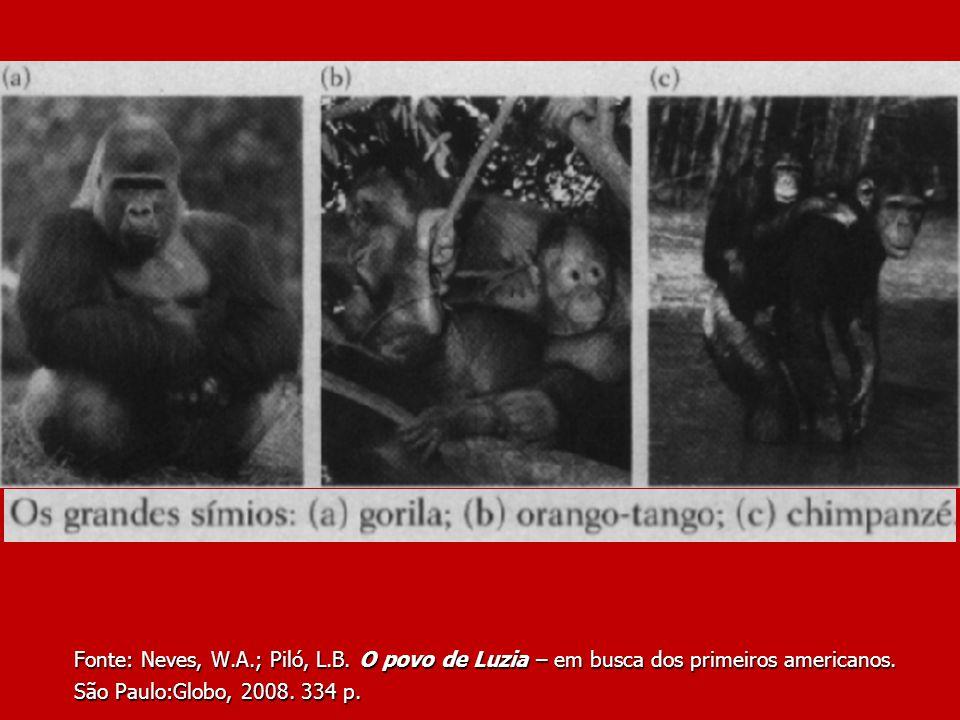 Fonte: Neves, W. A. ; Piló, L. B