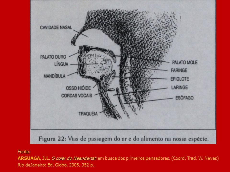 Fonte: ARSUAGA, J.L. O colar do Neandertal: em busca dos primeiros pensadores.