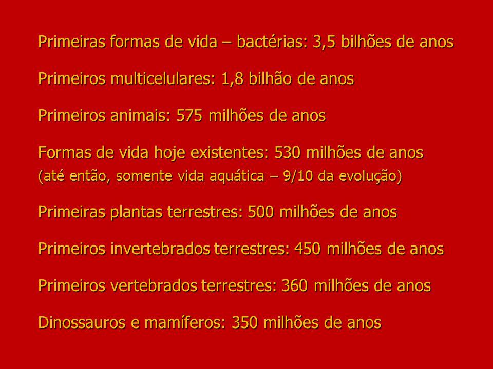Primeiras formas de vida – bactérias: 3,5 bilhões de anos Primeiros multicelulares: 1,8 bilhão de anos Primeiros animais: 575 milhões de anos Formas de vida hoje existentes: 530 milhões de anos (até então, somente vida aquática – 9/10 da evolução) Primeiras plantas terrestres: 500 milhões de anos Primeiros invertebrados terrestres: 450 milhões de anos Primeiros vertebrados terrestres: 360 milhões de anos Dinossauros e mamíferos: 350 milhões de anos
