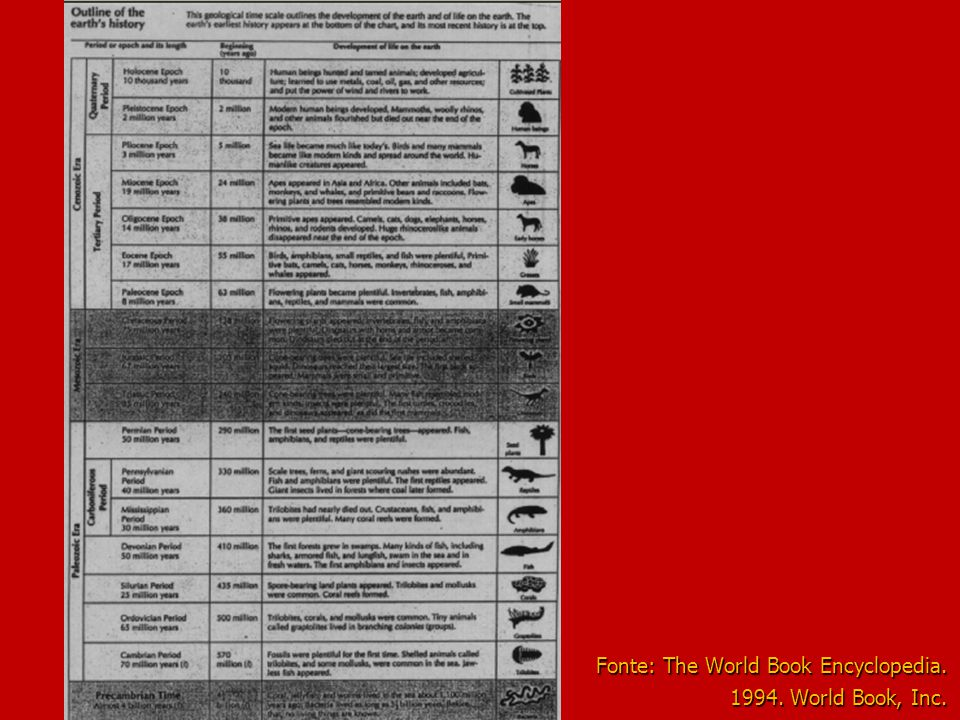 Fonte: The World Book Encyclopedia. 1994. World Book, Inc.