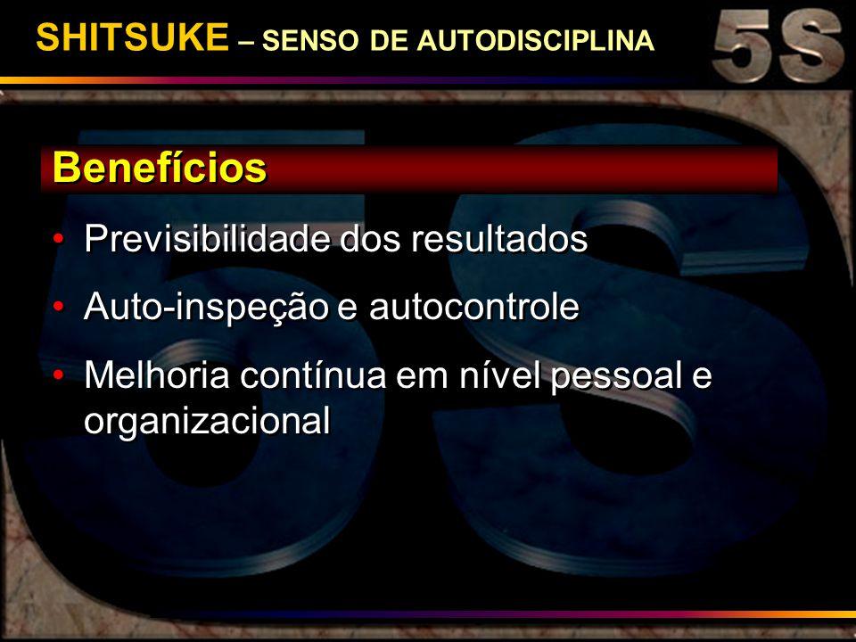 SHITSUKE – SENSO DE AUTODISCIPLINA