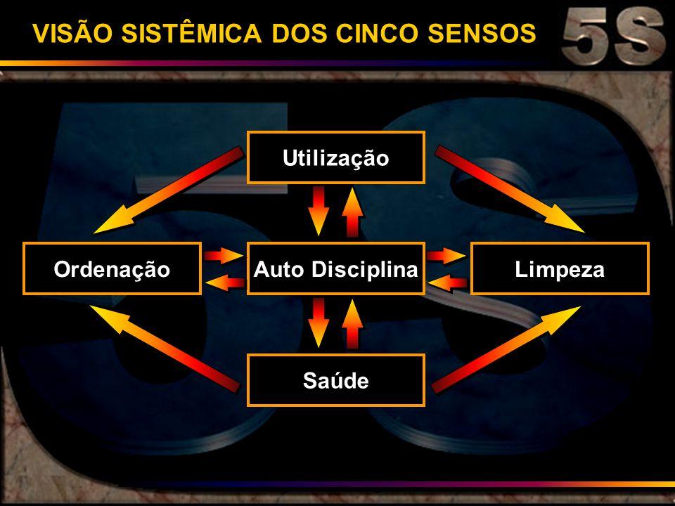 VISÃO SISTÊMICA DOS CINCO SENSOS